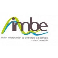 IMBE (Client alpheus)