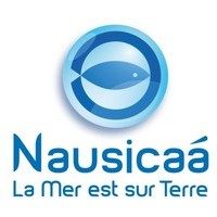 Nausicaa (Client alpheus)
