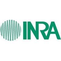inra (Client alpheus)